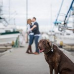 Chocolate Lab, dock engagement photos