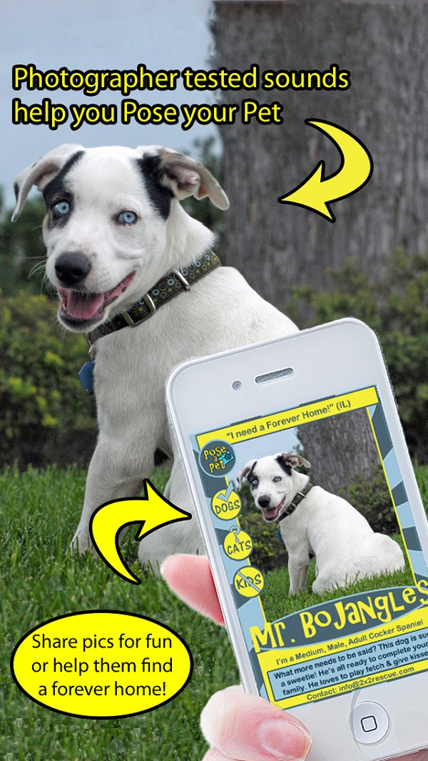 © Pose A Pet |phone app to help get rescue dogs adopted