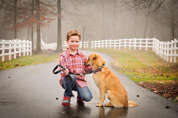 Puppy Love:  Hudson