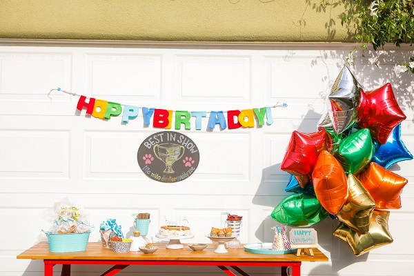 © Andrea Takeoka Photography |  Best-in-show-dog-pawty, party for dogs
