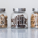 easy-dog-treat-jar-with-stickers