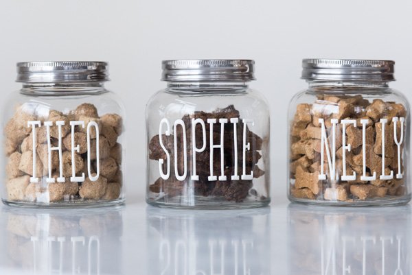 Easiest DIY Dog Treat Jar
