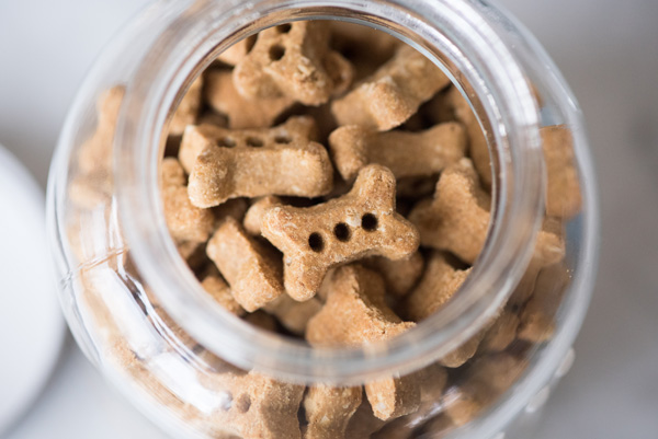© Alice G Patterson Photography | DIY-Project-treat-jar, Riley's-Organic-dog-treats