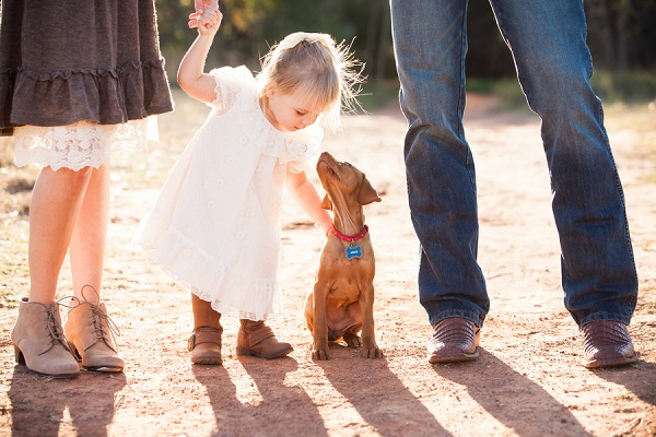 © Fife Photography | little-girl-Vizsla-puppy-family-pictures