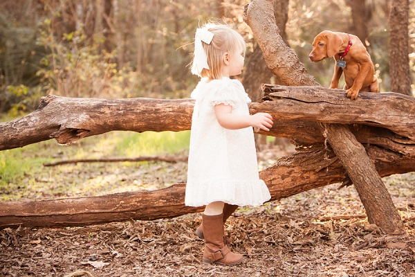 © Fife Photography |little-girl-Vizsla-puppy-in-woods, on-location-dog-photography