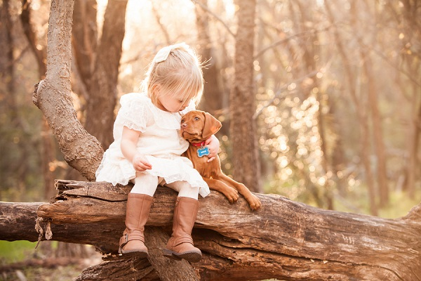 © Fife Photography |little-girl-Vizsla-puppy-in-woods-sitting-on-log