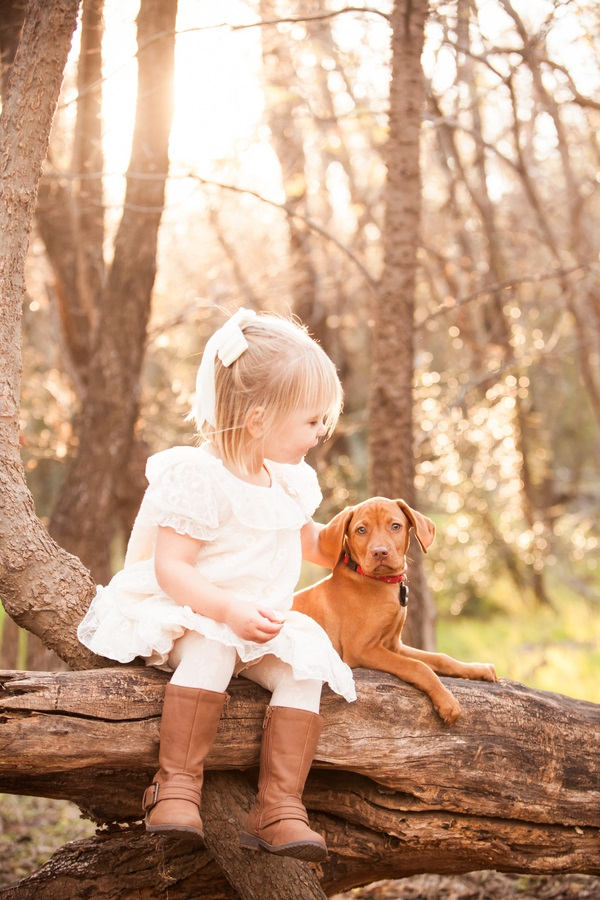 © Fife Photography |toddler-puppy-sweetest-friendship, lifestyle pet photography, little girl Vizsla puppy