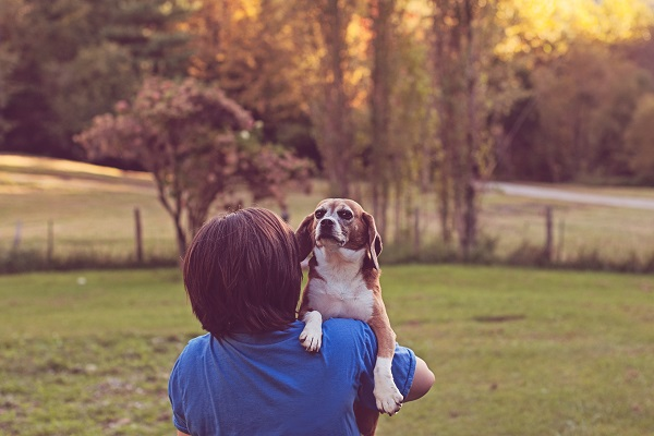 © Sweet Rocket Photography | ex research lab Beagle. rescued by Beagle Freedom Project