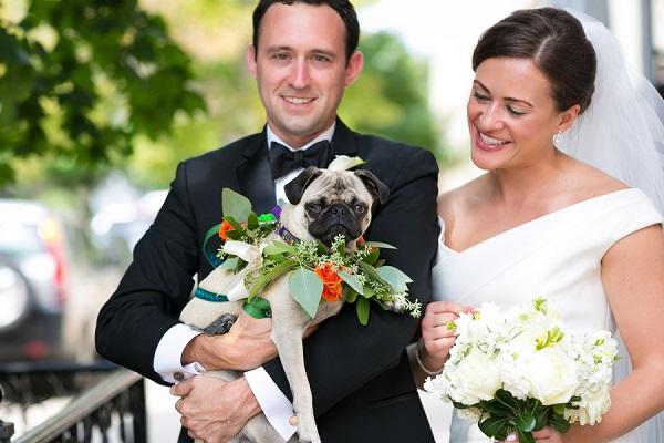 © Elena Bazini Photography | Pug, wedding-dog, best-dog