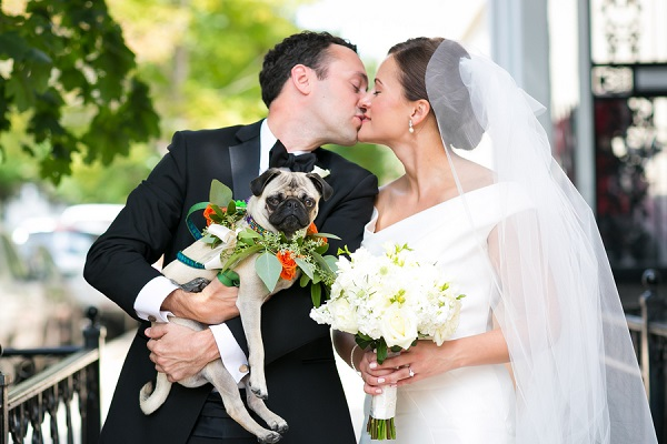 © Elena Bazini Photography | wedding-Pug, Chicago-wedding-photos