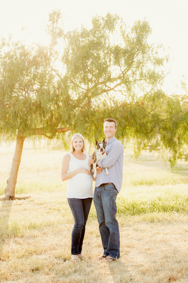 © Figlewicz Photography | maternity photography session with  Boston Terrier, on location pet photography