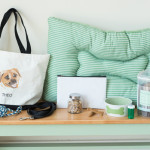 dog version-what's-in-your-bag