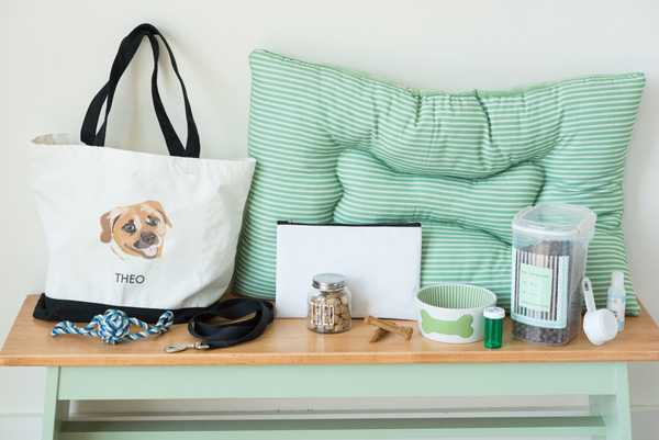 © Alice G Patterson Photography |dog version-what's-in-your-bag