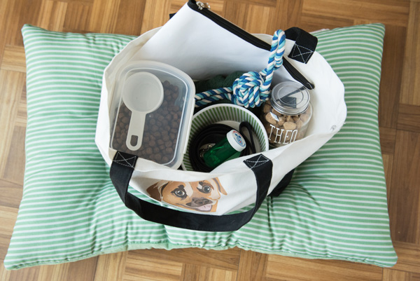 © Alice G Patterson Photography |dog's-weekend-bag, what-to-pack-for-dog, what's-in-your-bag-dog-version