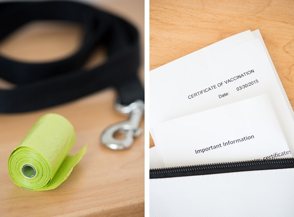 © Alice G Patterson Photography | #itsthelittlethings, poop bags, leash, dog medical records, emergency information card