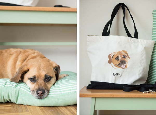 © Alice G Patterson Photography | Puggle-on-bed, Dog's-weekend-bag