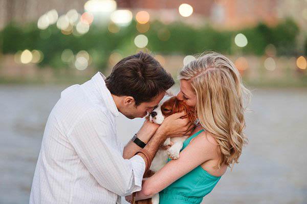 © Jenny Karlsson Photography | puppy love, Cavalier