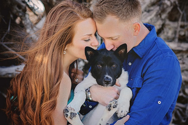 © Brooke Ashley Photography | lifestyle-family-puppy-photography, Savannah-on-location-dog-portraits, beach puppy