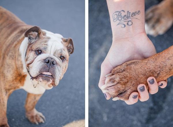 © Casey Hendrickson Photography |English-Bulldog-on-location-pet-photography, believe-tattoo