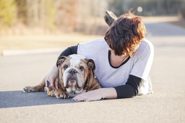 © Casey Hendrickson Photography | Charlotte, NC pet portraits, English-Bulldog and girl, girl and her dog