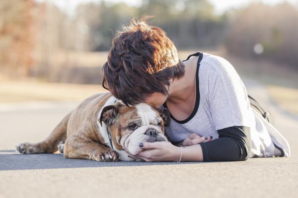 © Casey Hendrickson Photography | bittersweet pet photographs, English-Bulldog and girl