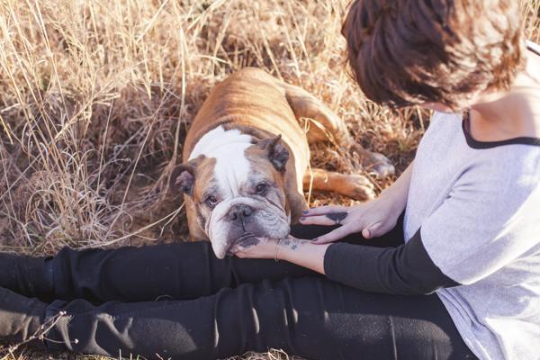 © Casey Hendrickson Photography | English Bulldog and girl in field