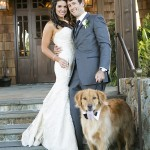Best-Dog, Bride, Groom