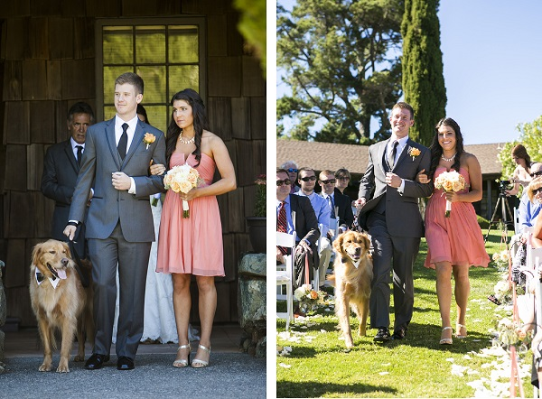 © Jules Bianchi Photography | Best dog, best man, maid-of-honor
