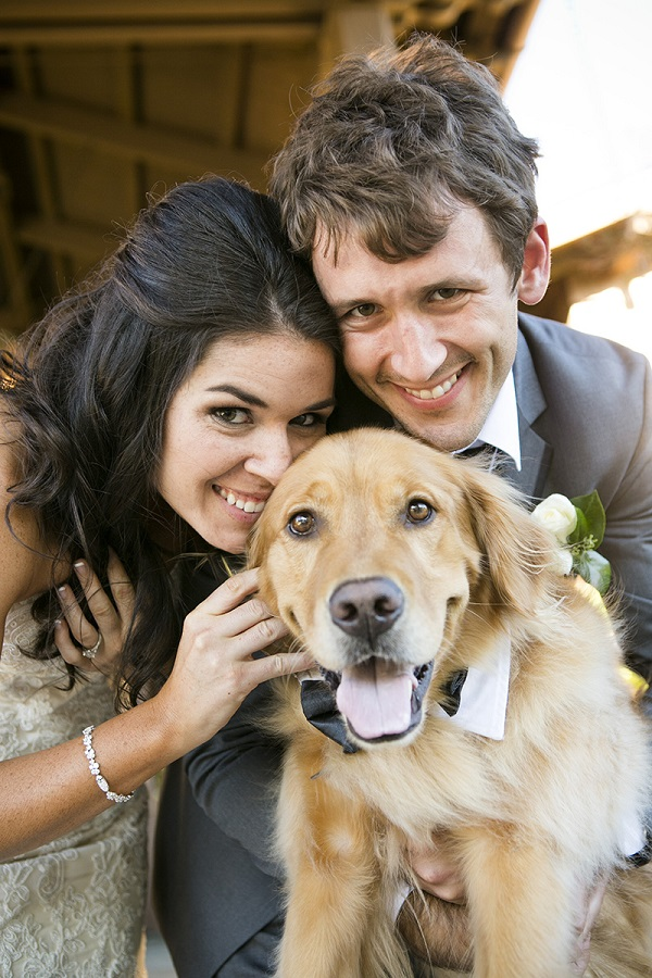© Jules Bianchi Photography | Golden-Retriever, dogs in wedding, bride, groom, dog in bow tie, best-dog