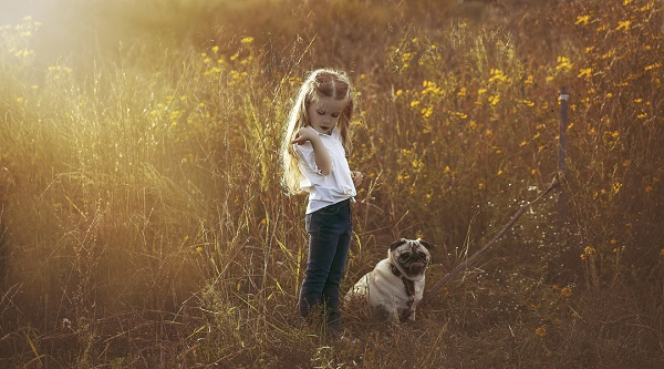 © Mila Jackson Photography |  girl and Pug, on location pet photography, golden light, Pug in field