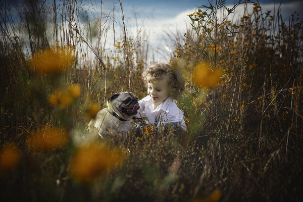 © Mila Jackson Photography | Pug and child in field, on-location-dog-portraits
