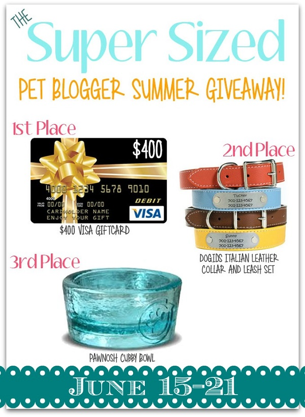 Super Sized Pet Bloggers Summer Giveaway June 15-21