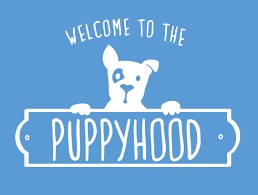 Welcome to the Puppyhood- go-to-website-for-puppy-owners, answer-puppy-questions