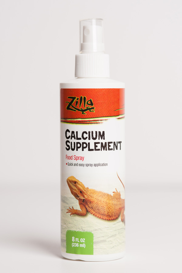 © Alice G Patterson Photography  | calcium supplement for tortoise, taking care of your reptile
