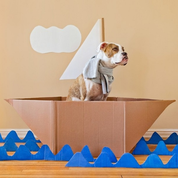 Christina Hilberg-Puka-in-boat,Boxer mix in cardboard boat
