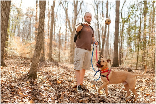 © Wolfcrest Photography |  DC area dog photography, foster dog, mixed breed, pittie mix enjoying time out of shelter