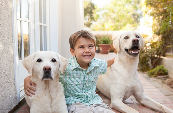 © Mary Bea Photography | boy with yellow labs, family-dog-lifestyle-photography