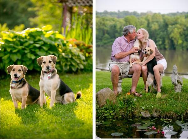 © Lindsay Docherty Photography | Daily Dog Tag | Dogs-family-portraits