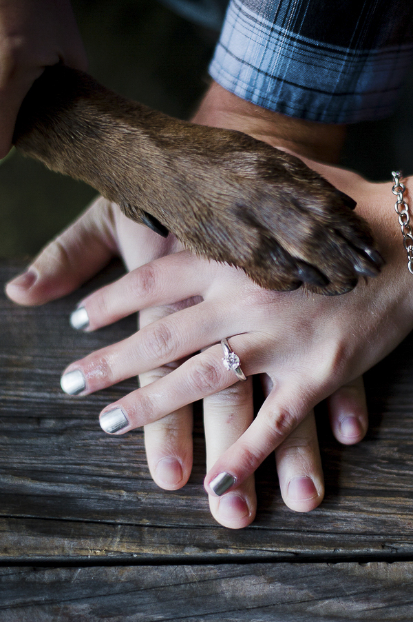 hands and paw engagement photos with dog