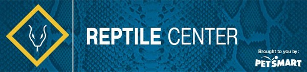Learn more about reptile care at petMD