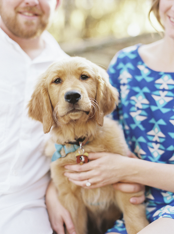 © Emily Katherine Photography | Fall Engagement Session, Phillipe Park, Golden Retriever Puppy, Fall engagement photos with puppy