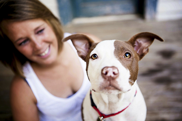 © Jessica Cobb Pet Photography | Gorgeous on location photos of rescued brown and white pit bull, photographer saves puppy