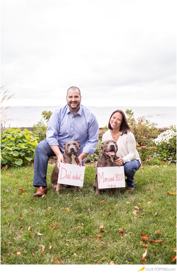 © Lillie Fortino Photography | Pit bulls wearing Save The Date sign, including dogs in engagement pictures