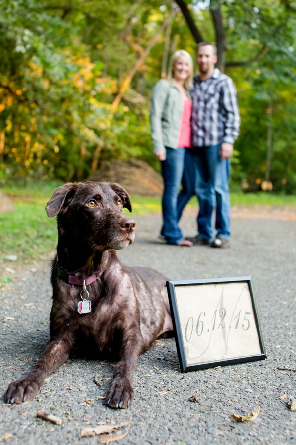 © Jeannine Marie Photography  | Retriever posing next to save the date sign, engagement photos with dog
