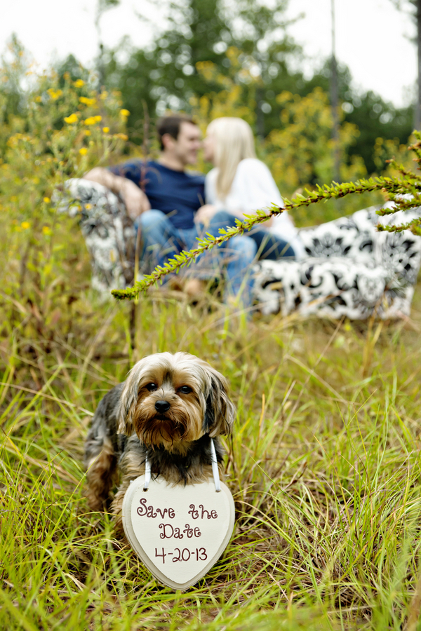 Andie Freeman Photography | small dog holding Save-The-Date-sign, engagement photos with dog