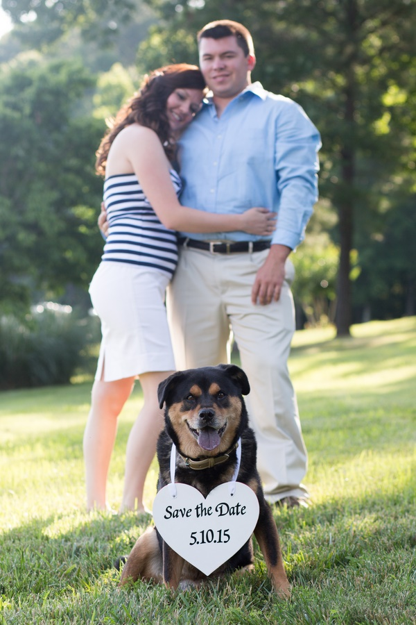 dd6d30676193 Save The Date Photos With Dogs - Daily Dog Tag