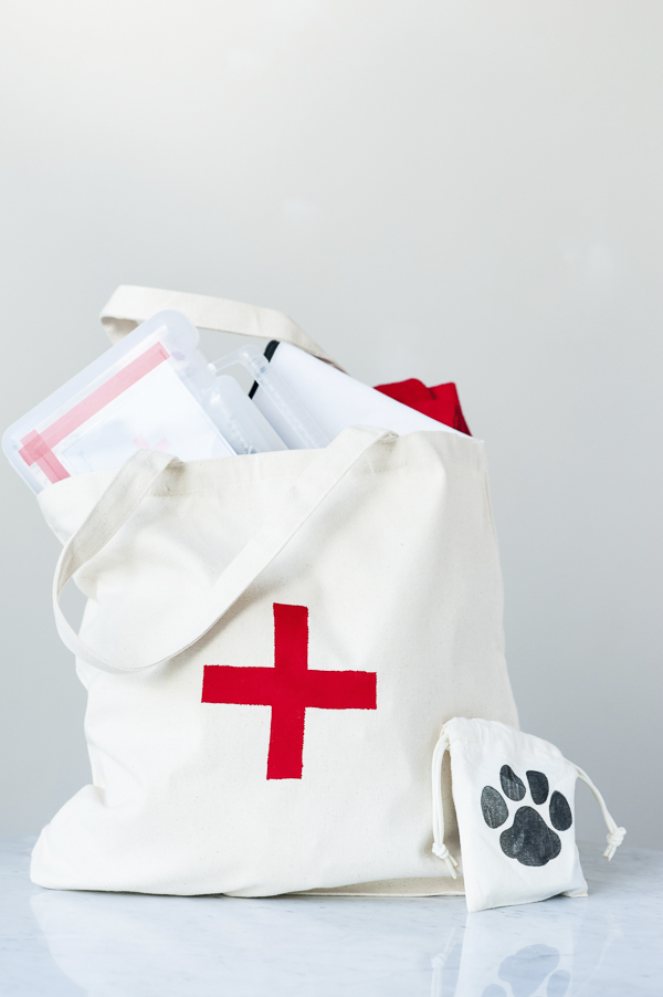 DIY First Aid Kit For Dogs