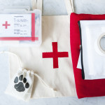 DIY First Aid Kit and Bags for dogs