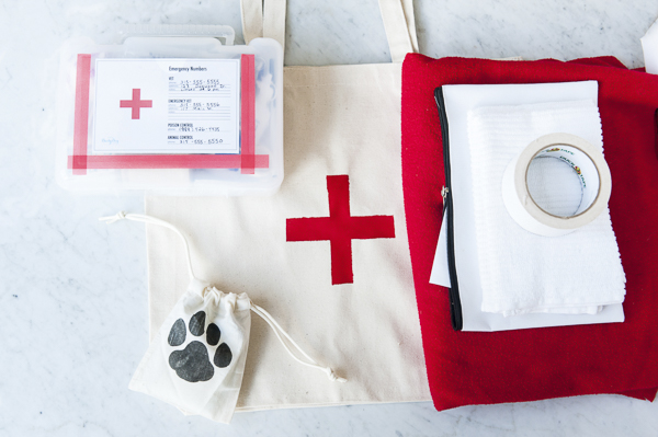 DIY First Aid Kit and Bags for dogs | Daily Dog Tag First Aid Essentials for Dogs, DIY Project For Dogs