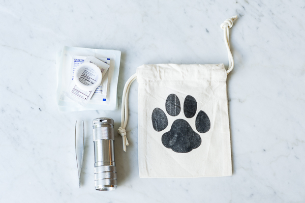 small bag for walks, first aid kit for pets